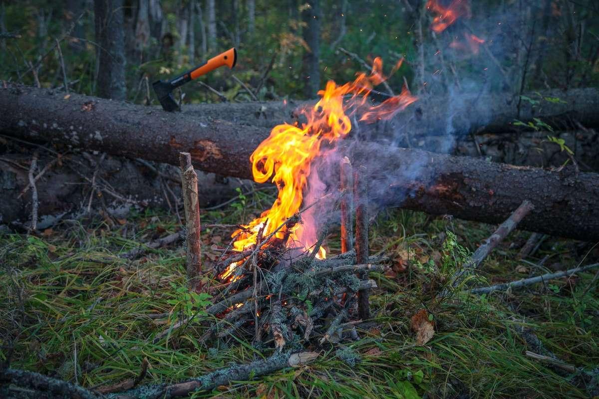 Immagine - Revoca stato di massima pericolosità per incendi boschivi, a partire dal giorno 15 aprile 2021